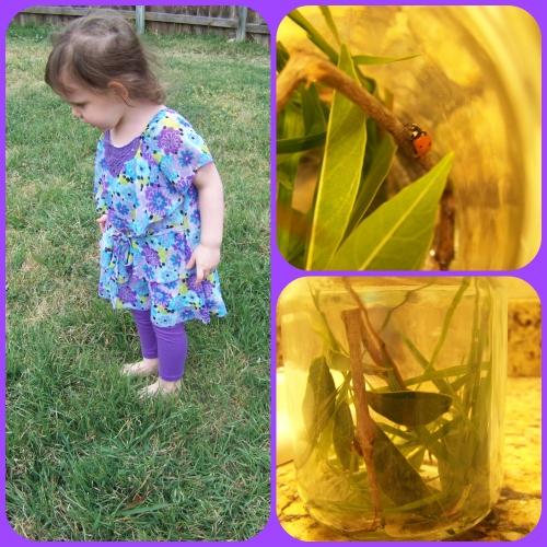 ladybug house jar
